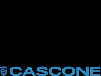 Concessionario CASCONE AUTO SRL di TORRE ANNUNZIATA